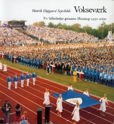 Herning-bogen 1999 - forside